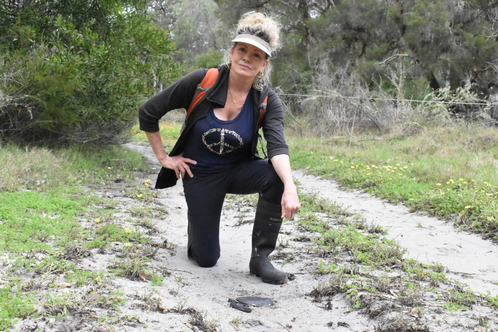 A gruesome discovery: Gelorup resident and photographer Terri Sharp found the remains of a dead long-neck turtle on a 4WD/motorbike track in Five Mile Brook last week. Photo: Thomas Munday.